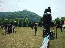 中四国P1020947.JPG